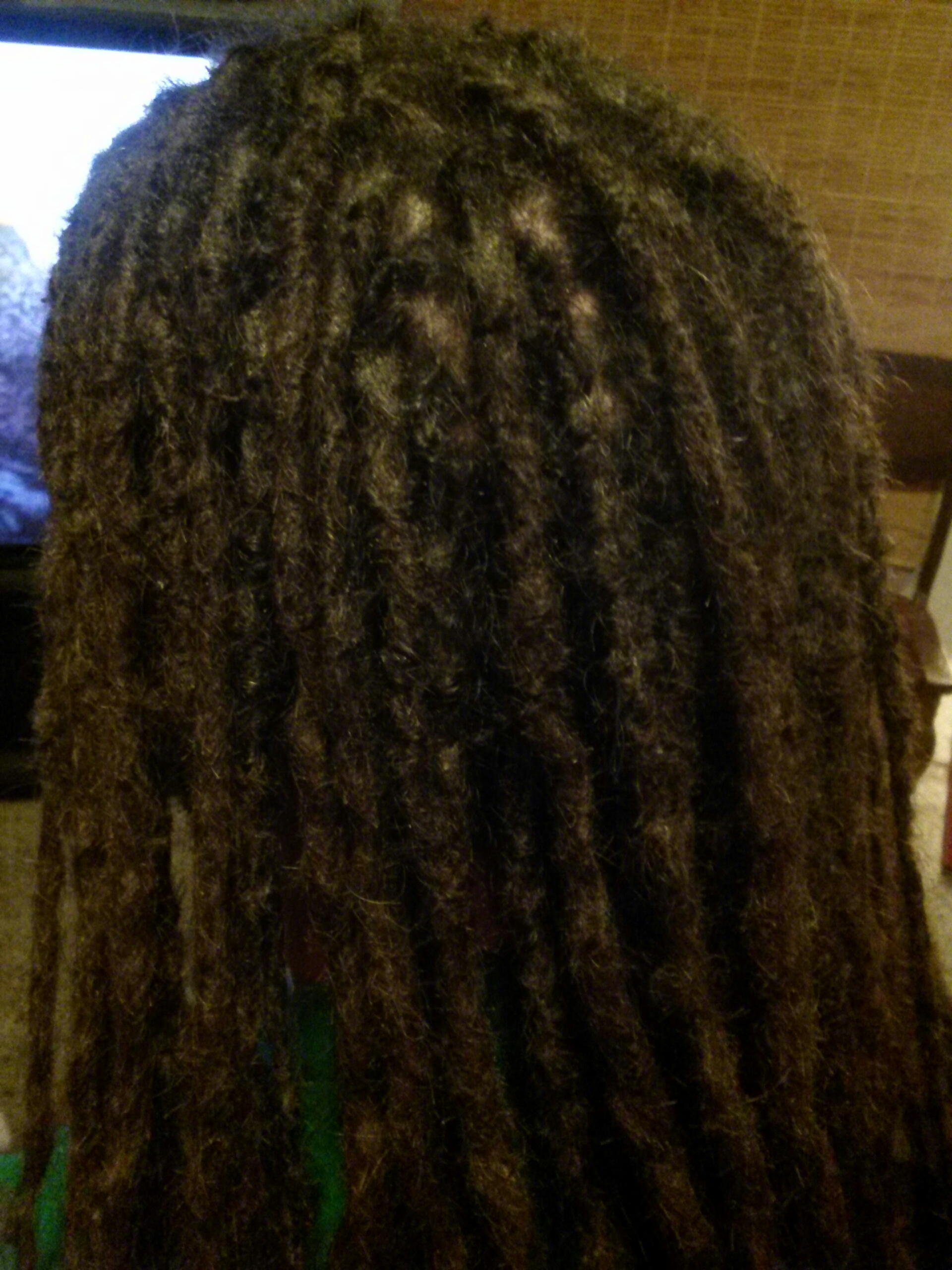 Caucasian Locs Interlocking With Extensions The Queen Of Locs 954